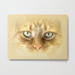 Argy Eyes Vignetted Metal Print