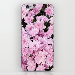 A Sea of Light Pink Chrysanthemums #1 #floral #art #Society6 iPhone Skin