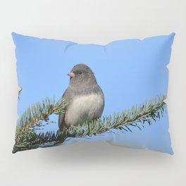 Backyard Beauty Pillow Sham