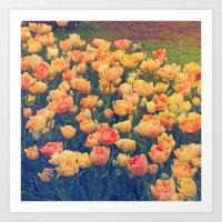 tulips Art Prints featuring Tulips  by Juliana RW