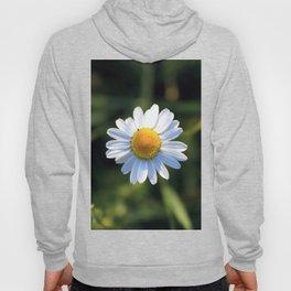 Chamomile flower Hoody
