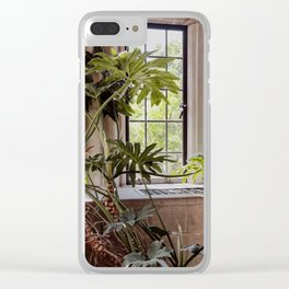 Plant in the Window, Summer Day Clear iPhone Case