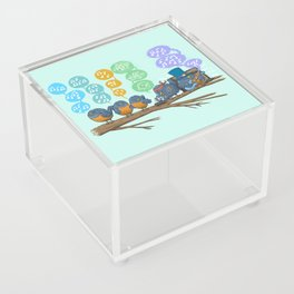 Spring Birds Acrylic Box