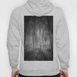 The Haunted Forest Hoody