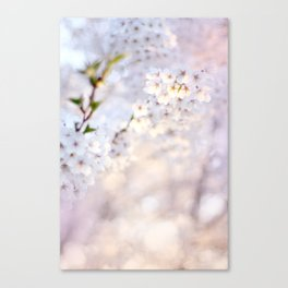 Water-colour Spring #1 Canvas Print