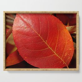 Autumn coppery red Juneberry berry leaf Serving Tray