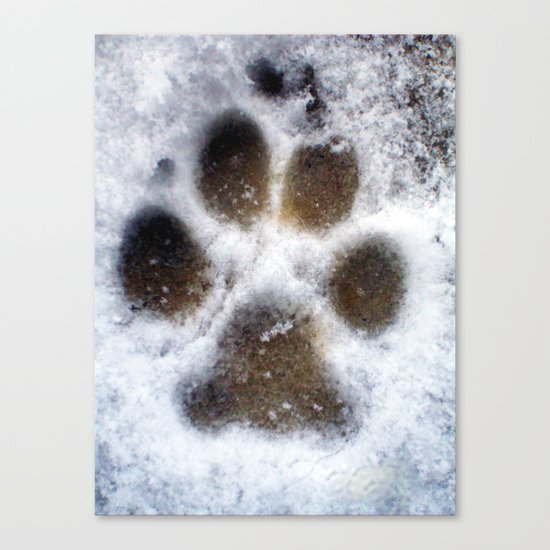 set in snow. Canvas Print