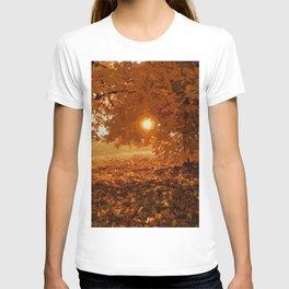 Autumnal Sunlight T-shirt