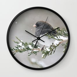Snowbird on a Snowy Branch (Junco) Wall Clock