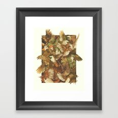 Red-Throated, Black-capped, Spotted, Barred Framed Art Print
