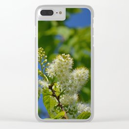 Mayday Tree in Bloom Clear iPhone Case