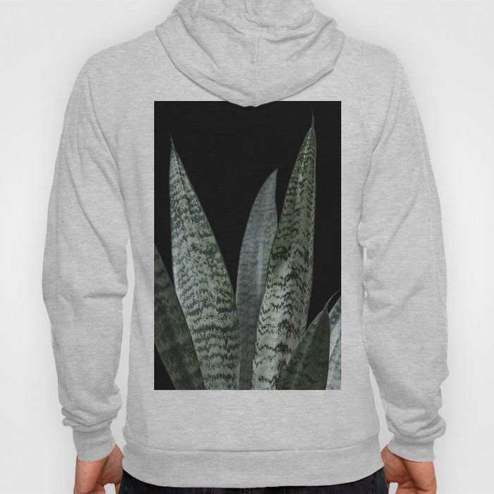 Snake plant with black Hoody