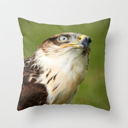 Ferruginous Hawk I Throw Pillow