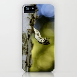 A Walk in the Woods is Good for the Soul iPhone Case