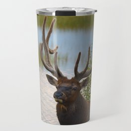 A Bull Elk in the Rocky Mountains Travel Mug