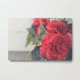Red Carnation Metal Print