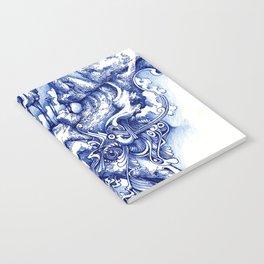 skine Notebook