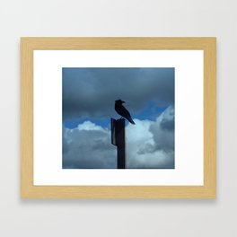 Raven on Blustery Day Framed Art Print