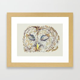 Arthur Owl Framed Art Print