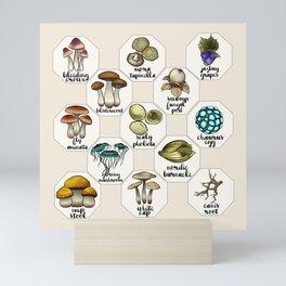 Skyrim Ingredient Illustrations Vol. 1 Mini Art Print
