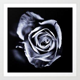 Silver Petals Art Print