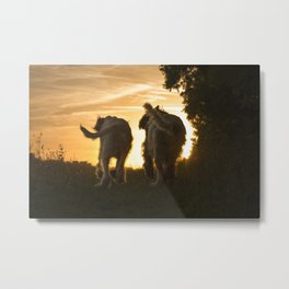 Canine Sunset Silhouettes Metal Print