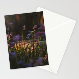 Hyacinths in the Netherlands | Travel Photography | Spring Photo Print Stationery Cards