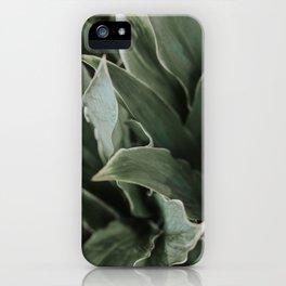 RICA iPhone Case
