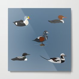 Ducks and a Loon Metal Print