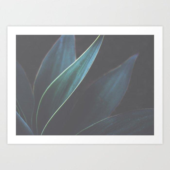 The Dance of Plants Art Print