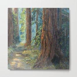 Big Basin Redwood Grove, California landscape painting by Leonora Naylor Penniman Metal Print