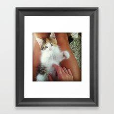Kitten Chow Framed Art Print