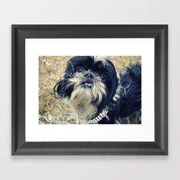 wookie dog Framed Art Print