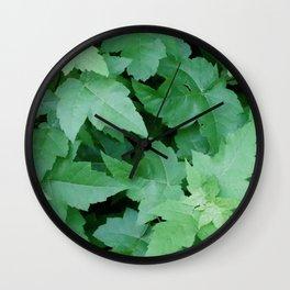 Settled Wall Clock