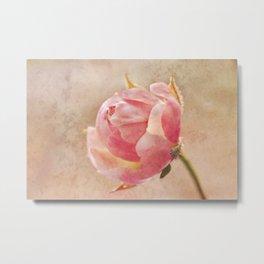 Pretty Little Rosebud. Metal Print