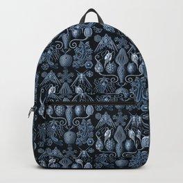 Ernst Haeckel Amphoridea Sea Life Backpack