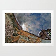 Puddle Shoreline Art Print