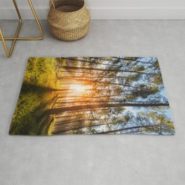 sunset behind trees in forest landscape - nature photography Rug