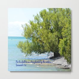 Tree By The Water With Scripture Quote Metal Print