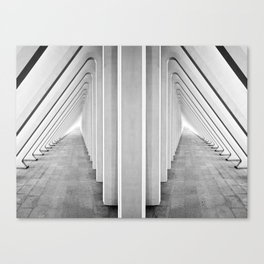 Endless Symmetry Canvas Print