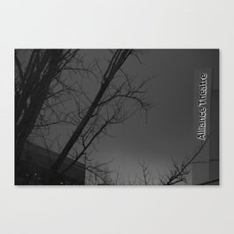 The a ter Canvas Print
