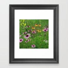 Meadow Flowers Framed Art Print