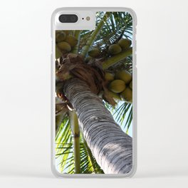 Coconut Palm Clear iPhone Case