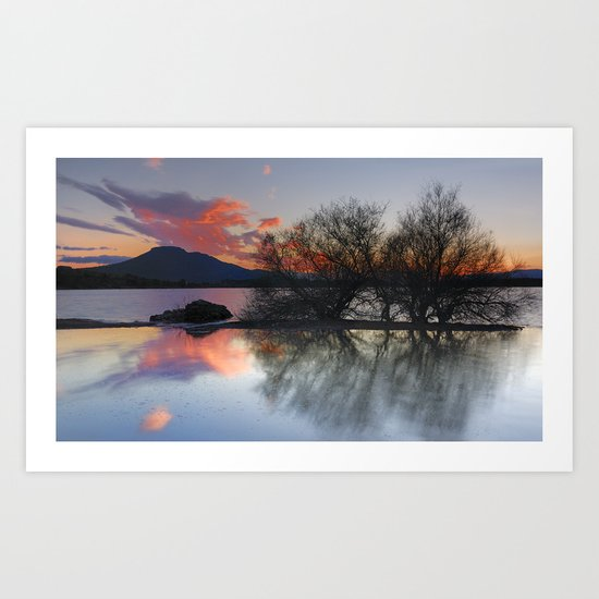 Trees in the water at the red sunset Art Print