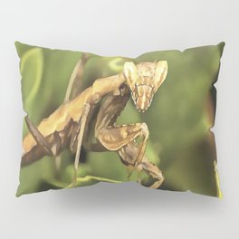 Praying Mantis On Green Garden Background Pillow Sham