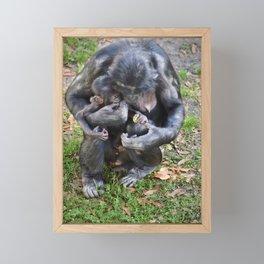 Bonobo Family Moment Framed Mini Art Print
