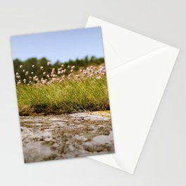 Koster's flowers Stationery Cards
