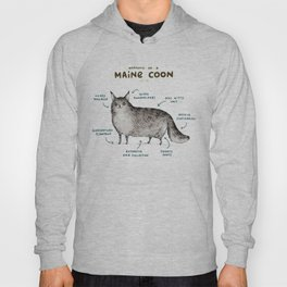 Anatomy of a Maine Coon Hoody