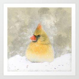 Snowy Femal Cardinal Art Print