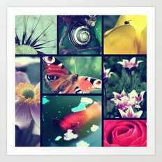 Nature pictures Art Print